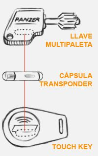 capsula-vertical